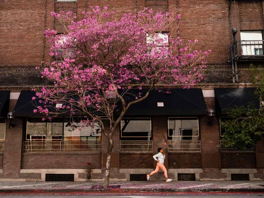 A woman jogging down an urban street with a pink tree in bloom.