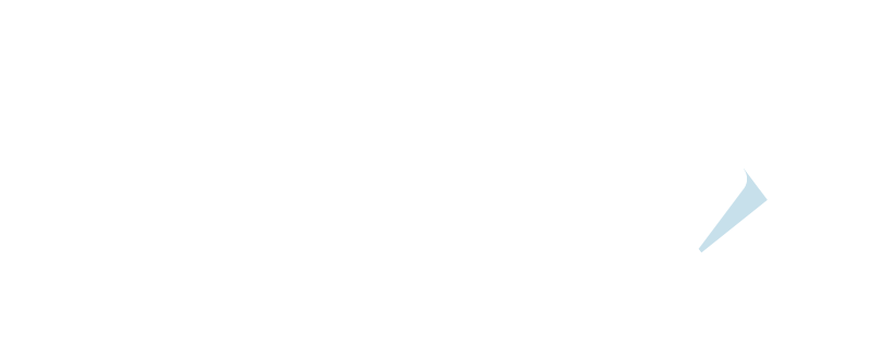 カーボン X 2